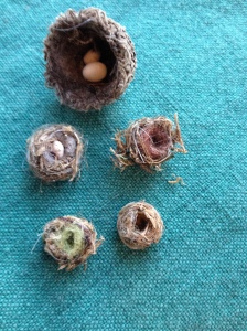 MiniatureNests
